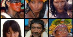 Amazonian tribal warfare sheds light on modern violence