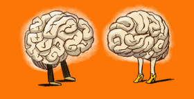 Why Are Our Brains So Ridiculously Big?