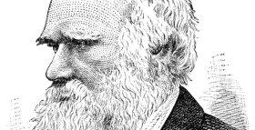 Mental Disorders And Evolution: What Would Darwin Say About Schizophrenia?