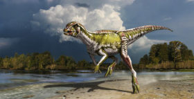 Smallest Herbivorous Dinosaur Discovered in Canada: Albertadromeus