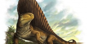 Scientists Reveal Secrets of Dimetrodon Dentition