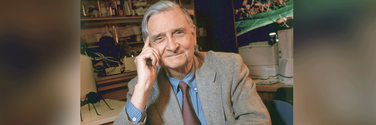 biological psychology and edward osborne wilson While the term sociobiology can be traced to the 1940s, the concept of sociobiology first gained major recognition with edward o wilson's 1975 publication sociobiology: the new synthesisin it, he introduced the concept of sociobiology as the application of evolutionary theory to social behavior.
