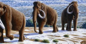 Image by Alan Turner (2004) National Geographic Prehistoric Mammals