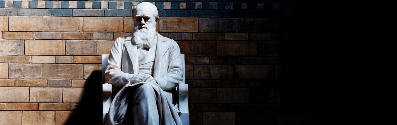 "social darwinism selected essays of william graham sumner William graham sumner's essays won him fame and infamy: he sumner feared the ""social quackery"" of ""amateur selected and favored producer."