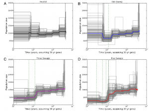 Inference of effective population size change using PSMC under different scenarios of recurrent sweeps. Image courtesy: Figure 5 of Schrider et al. (2016) http://dx.doi.org/10.1101/047019