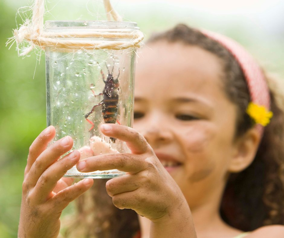 The Benefits of Teaching Evolution in Early Childhood